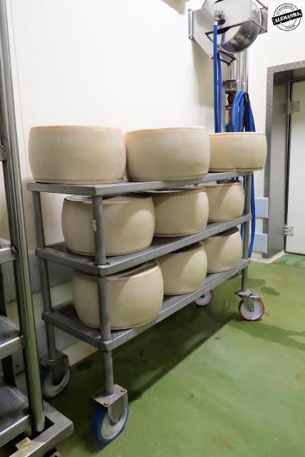 queijo parmesão Itália