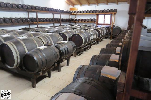 Visita à fábrica de Queijo Parmesão e Vinagre Balsâmico