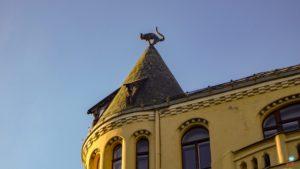 Casa do gato em Riga