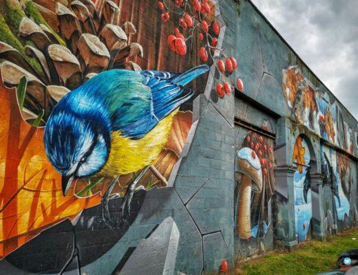 Grafite de Glasgow Escócia
