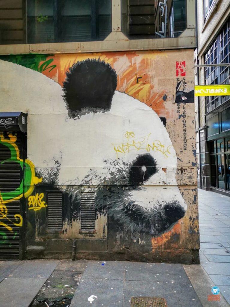 Panda de Glasgow - Grafites de Glasgow, Escócia