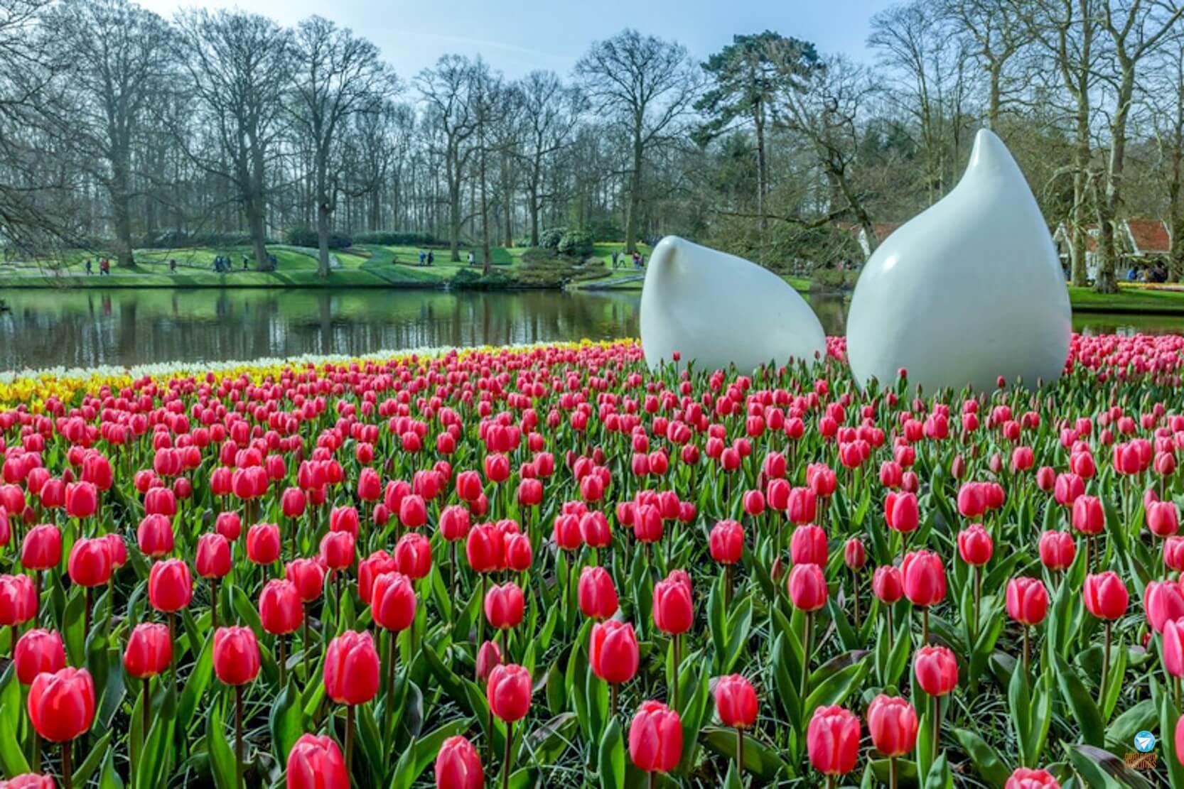 visitar Keukenhof na Holanda