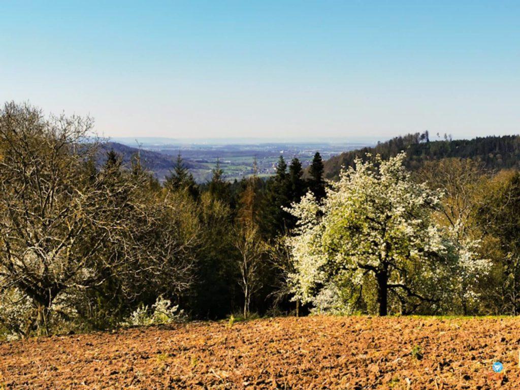 vista sul Alemanha