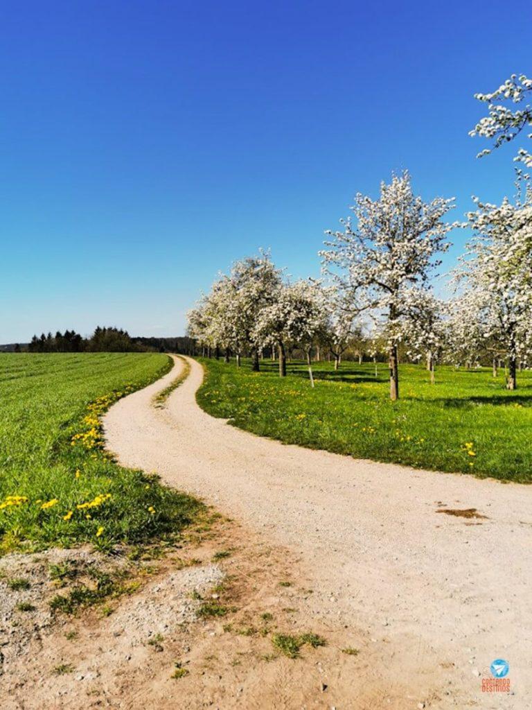 Primavera sul da Alemanha