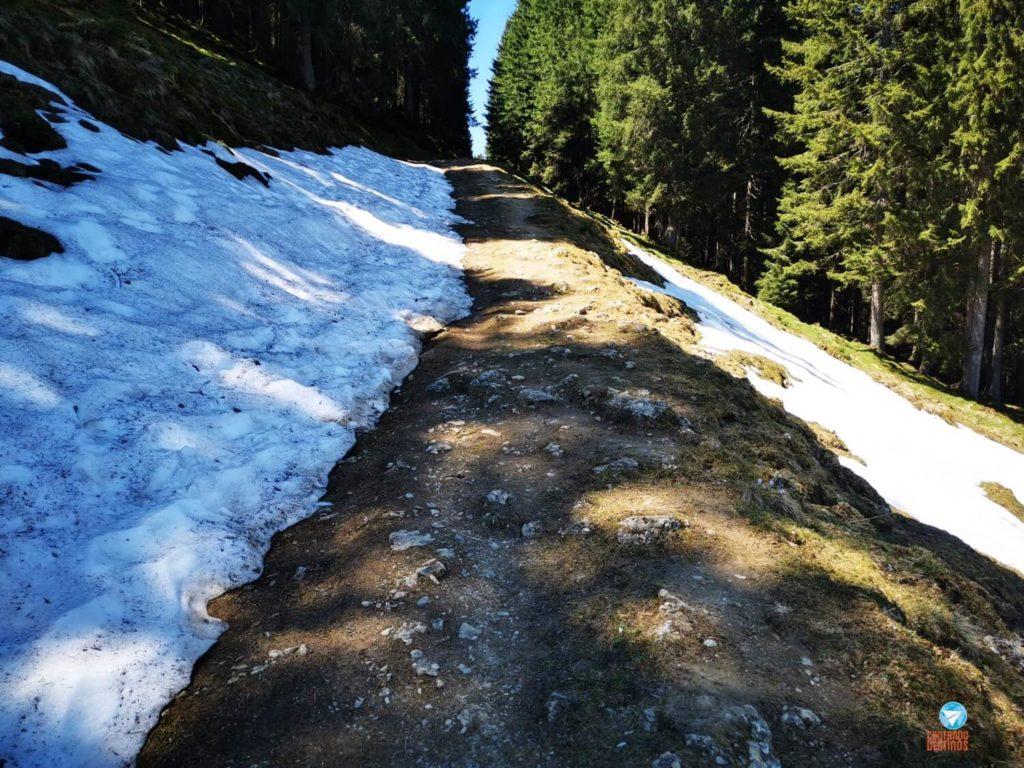 Neve nos alpes - Alemanha